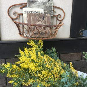 春の香り・・・素敵なお客様をお迎えします♪             輸入住宅茨城 茨城